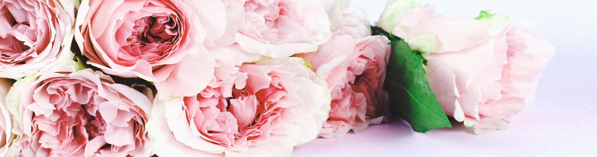 flower-1119wp